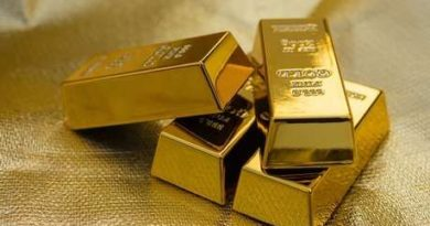 बांग्लादेश से स्मगलिंग किया गया साढ़े 16 करोड़ रुपये का सोना कोलकता, रायपुर और मुंबई से जब्त